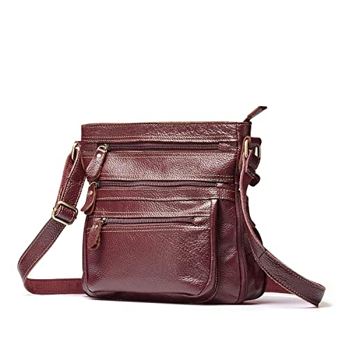 7970ac21fabd Lecxci Mens Vintage Leather Cross body Handbags, Zipper Travel Crossbody  Bags Purses for Women (