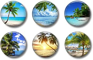 Palm Tree Magnets - Ocean Beach Set - Cute Locker Magnets For Teens Fridge Whiteboard or Office