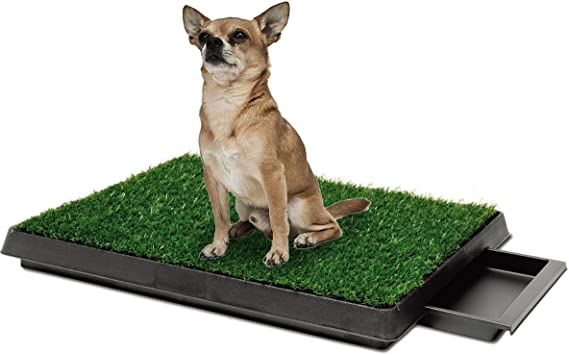 Pawsfiesta Indoor Pet Toilet Dog Grass Restroom Potty Training With Tray And Loo Pad Amazon Co Uk Pet Supplies