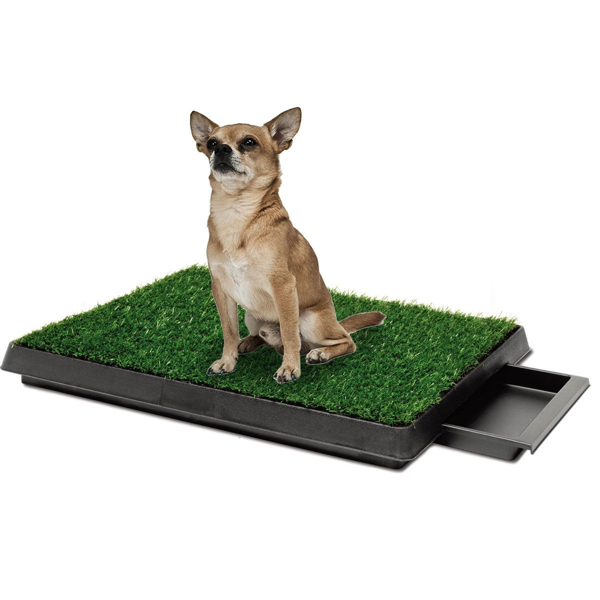 Indoor Pet Toilet Dog Grass Restroom Potty Training with Tray and ...