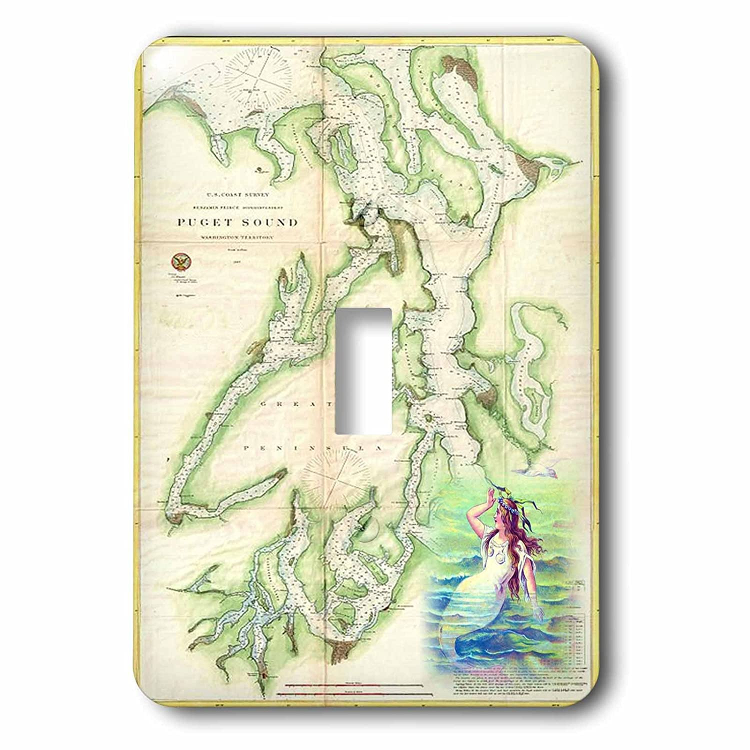 3dRose lsp/_214252/_1 Print of Vintage Nautical Puget Sound Map Single Toggle Switch 3D Rose Home Improvement