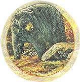 Thirstystone Drink Coaster Set, Black Bear
