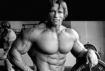 Arnold Schwarzenegger Bodybuilding POSTER HD Wallpaper Background Fine Art Paper