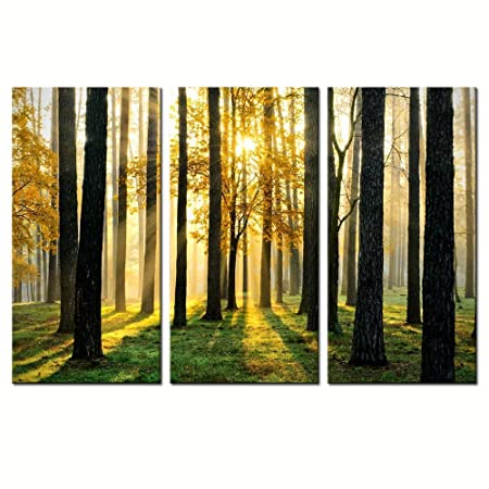 sechars – Forest Canvas Wall Art,Morning Scene with Sun Rays Picture Canvas Prints Forest Landscape Painting Giclee Artwork Printed Framed,Modern Office Home Living Room Decoration Ready to Hang