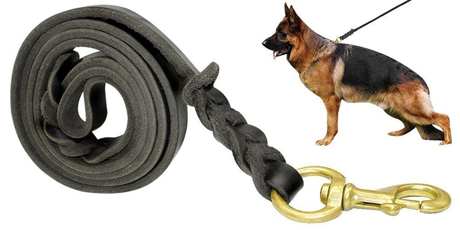 Fairwin Leather Dog Leash 6 Foot - Best Braided Military Grade Heavy Duty Dog Leash for Large Medium Small Dogs Training and Walking (3/4'' Width, Black)