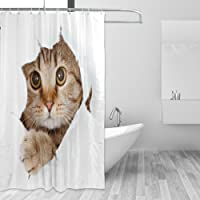 JSTEL Decor Shower Curtain Cat Pattern Print 100% Polyester Fabric 66 x 72 Inches for Home Bathroom Decorative Shower Bath Curtains with Plastic Hooks
