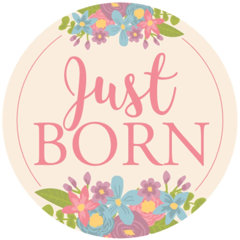 Amazon.com: Pegatinas de cumpleaños para bebé (paquete de 18 ...