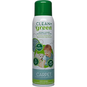 Amazon Com Clean Green Carpet Cleaner Natural Stain And