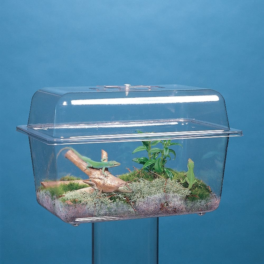 Aquarium/Terrarium, Plastic, without Cover, 1 1/2 gal