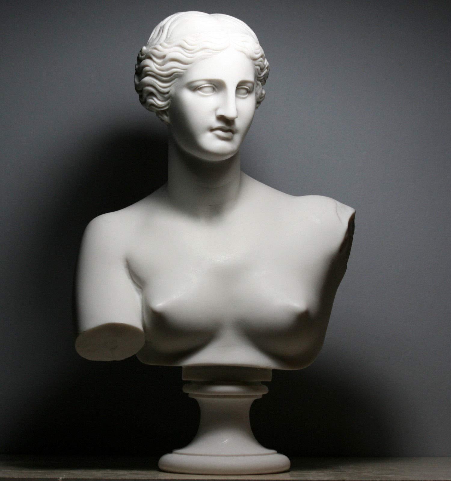 Aphrodite Goddess Venus de Milo Bust Head Greek Cast Marble Sculpture 20.8''/53cm