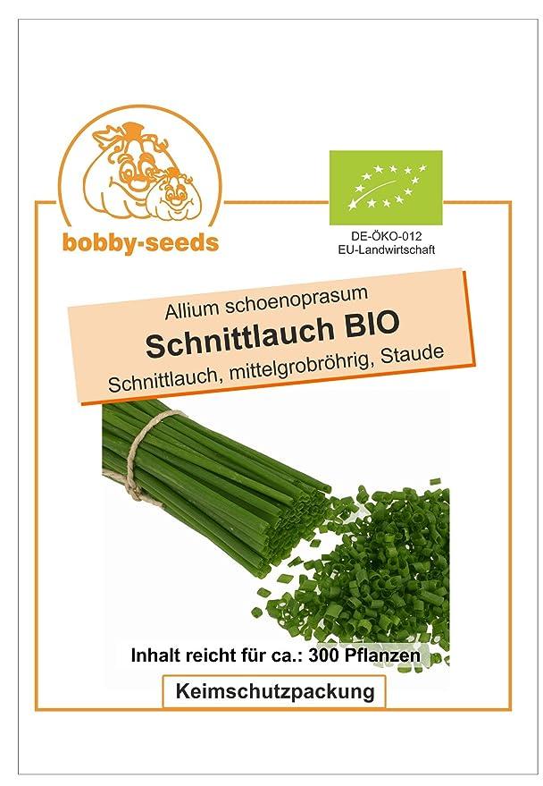 Bobby-Seeds BIO-Kr/äutersamen Ysop Portion