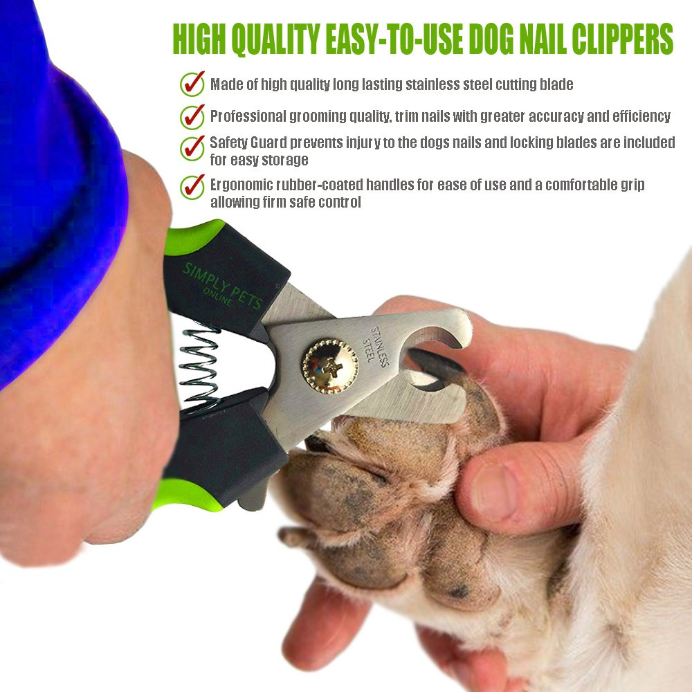 Amazon Professional Dog Nail Clippers Breed Easy to