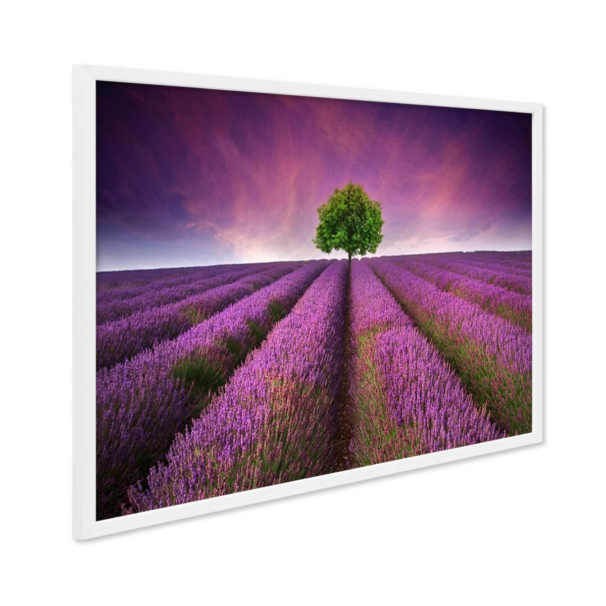 PHOTOLINI Poster mit Bilderrahmen Weiss \'Lavendel\' 30x40 cm Motiv ...