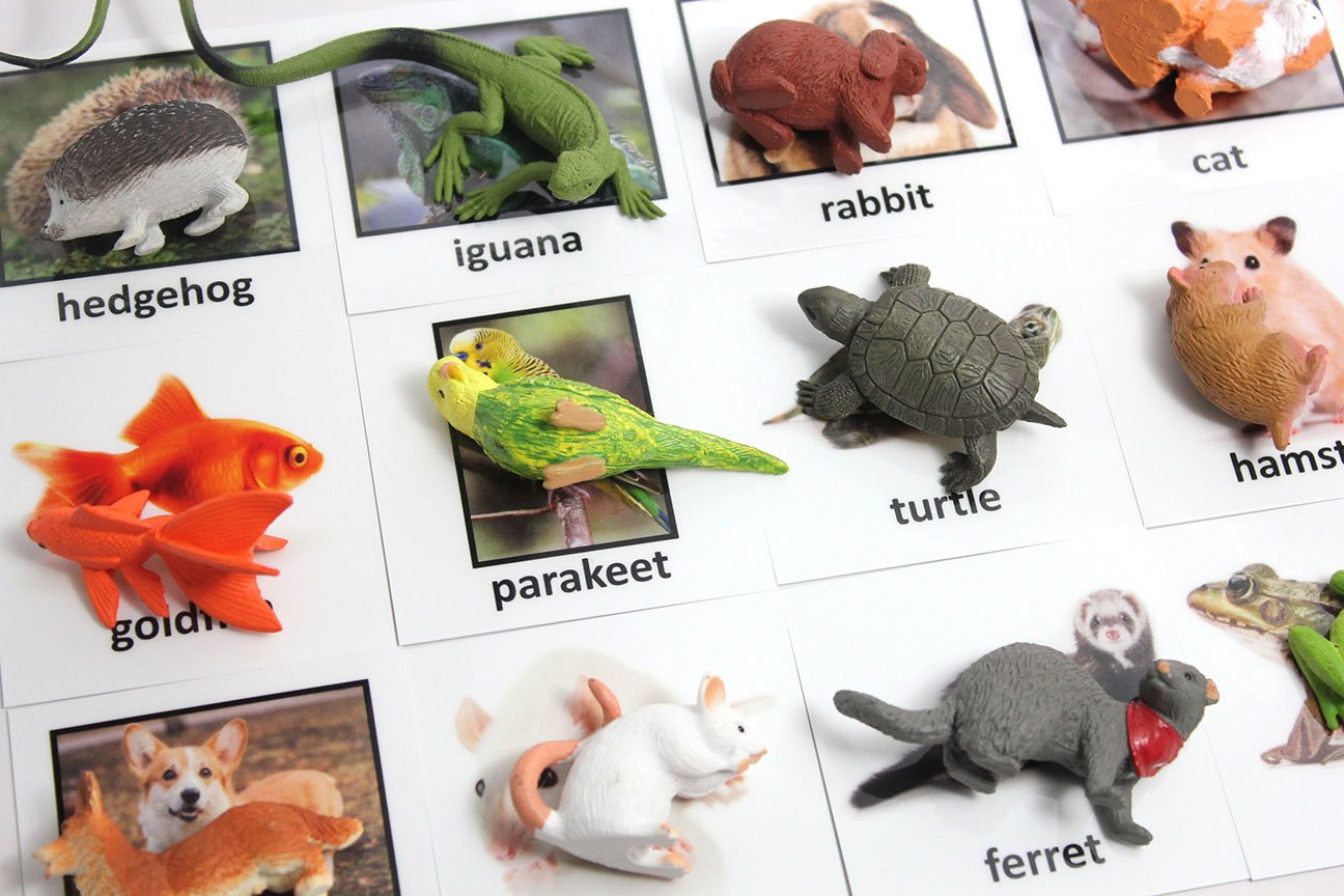 language materials Busy Bag Activity 2 Part Cards Miniature Pet Animal Toy Figurines with Matching Cards Montessori learning toy Montessori Pet Animal Match