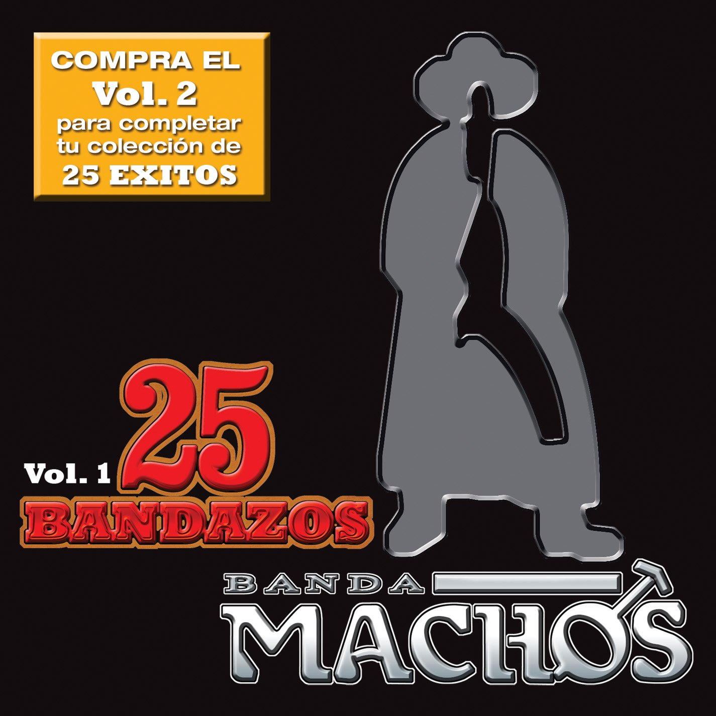 25 Bandazos De Machos Vol. I by Wea International