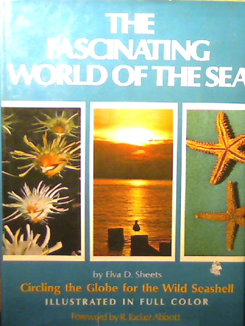 The Fascinating World of the Sea: Circling the globe for the wild seashell