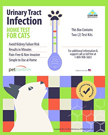 AmazonCom Petconfirm  Instant Urinary Tract Infection Uti