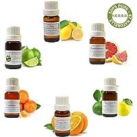 Kit Découverte LES AGRUMES - Lot De 6 Huiles Essentielles H.E.B.B.D. 10ml : Orange, Citron, Pamplemousse, Bergamote, Mandarine, Citron Vert