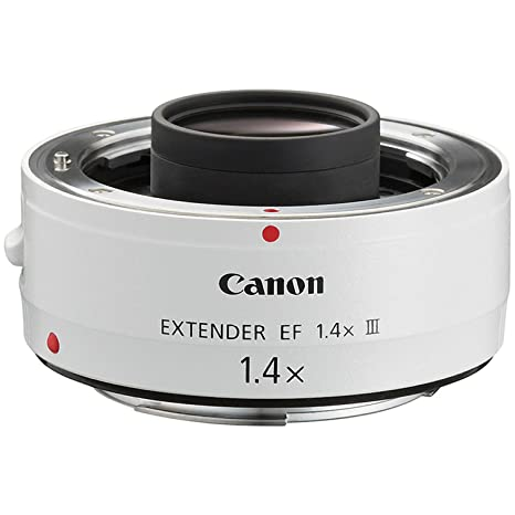 The 8 best canon lens extender