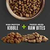 Rachael Ray Nutrish Peak Natural Dry Dog Food with