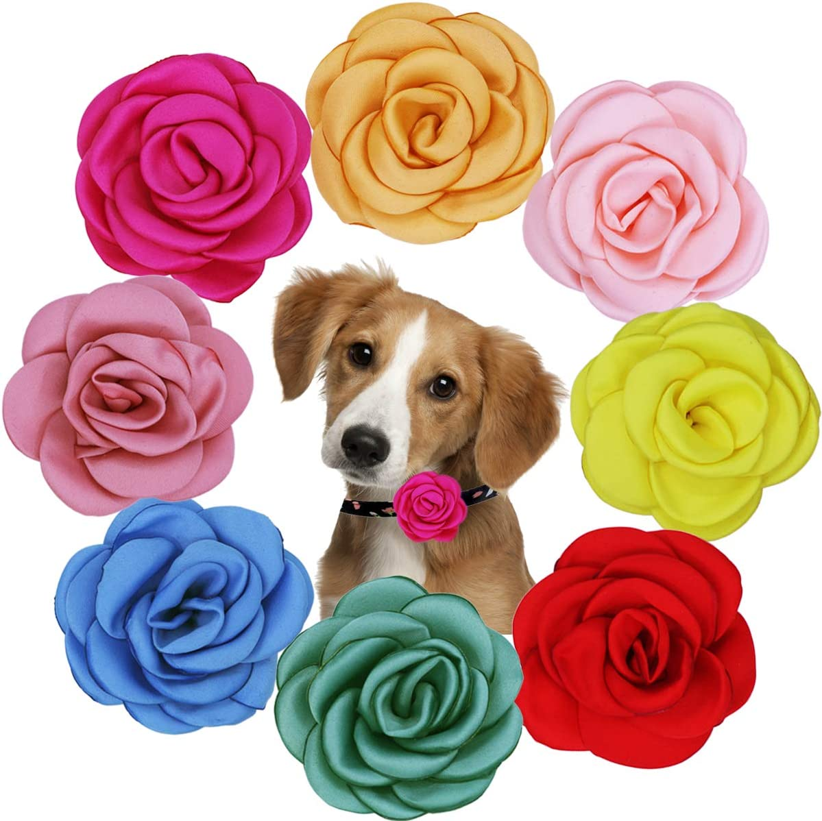 Chiffon Flower Dog Collar Bow