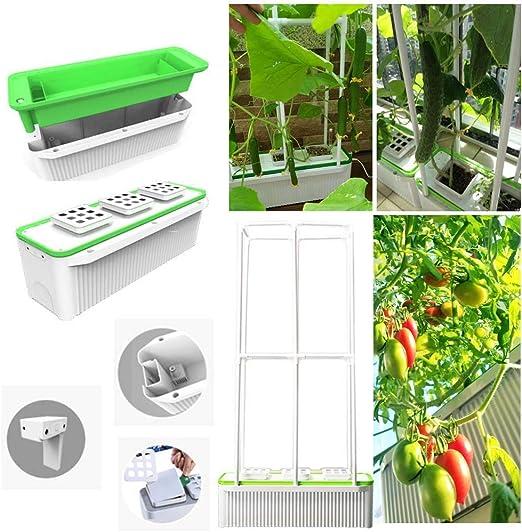 Inteligente Interior Jardín hidropónico, Super Hydroponics Herb Garden con riego automático para Verduras/Flores/Frutas trepadoras Grandes, Bomba incorporada, Plus 40in Climbing Trellis: Amazon.es: Hogar