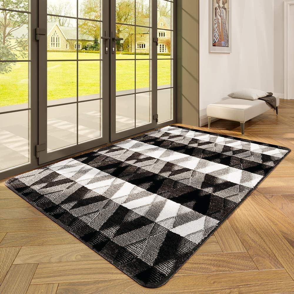 DEXI Indoor Doormat Front Door Rug, 47