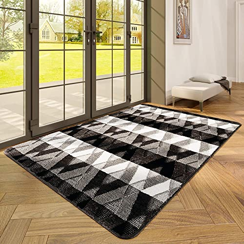DEXI Indoor Doormat Front Door Rug, 47 x67 Absorbent Machine Washable Inside Door Mat Large, Non Slip Low-Profile Entrance Rug for Entry, Back Door, Black