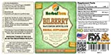 Bilberry (Vaccinium Myrtillus) Glycerite, Dried