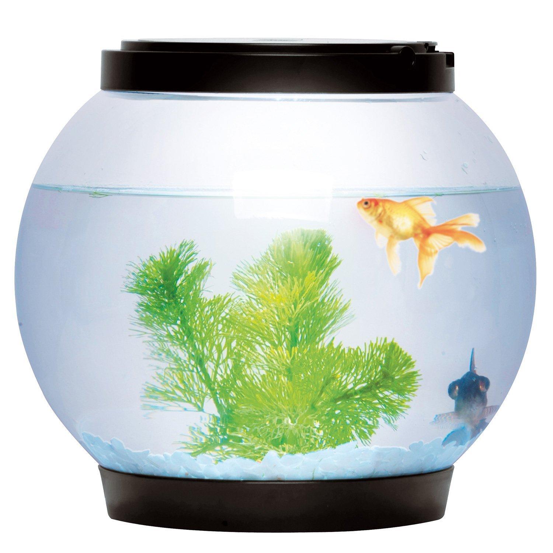 Aquarium en verre rond avec 2LED (Noir) - 5l - Sentik®