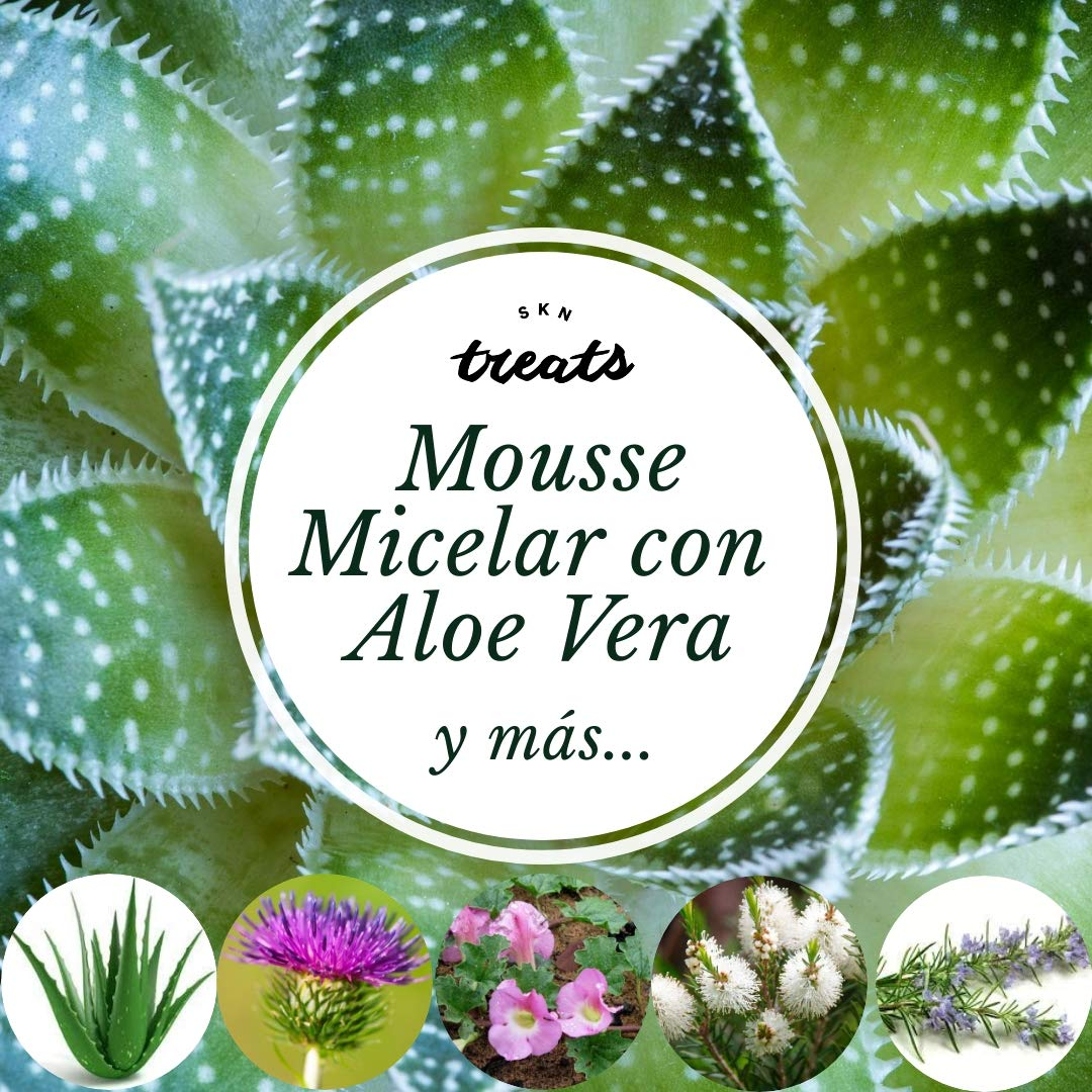 MOUSSE LIMPIADOR MICELAR CON ALOE VERA SKN TREATS - 200 ml: Amazon.es: Belleza