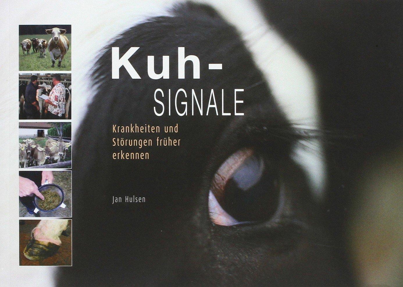 Kuh-Signale: Krankheiten und Störungen früher erkennen