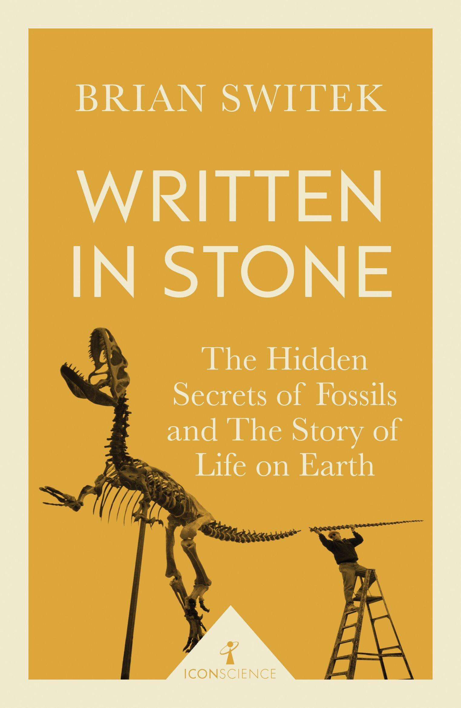 Written in Stone (Icon Science) pdf epub