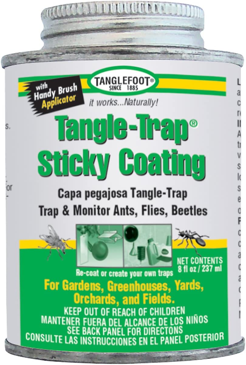 Tanglefoot 018441950082 300000588 8-Ounce Tangle Brush On Sticky Trap Coating, 8 oz (Old), White