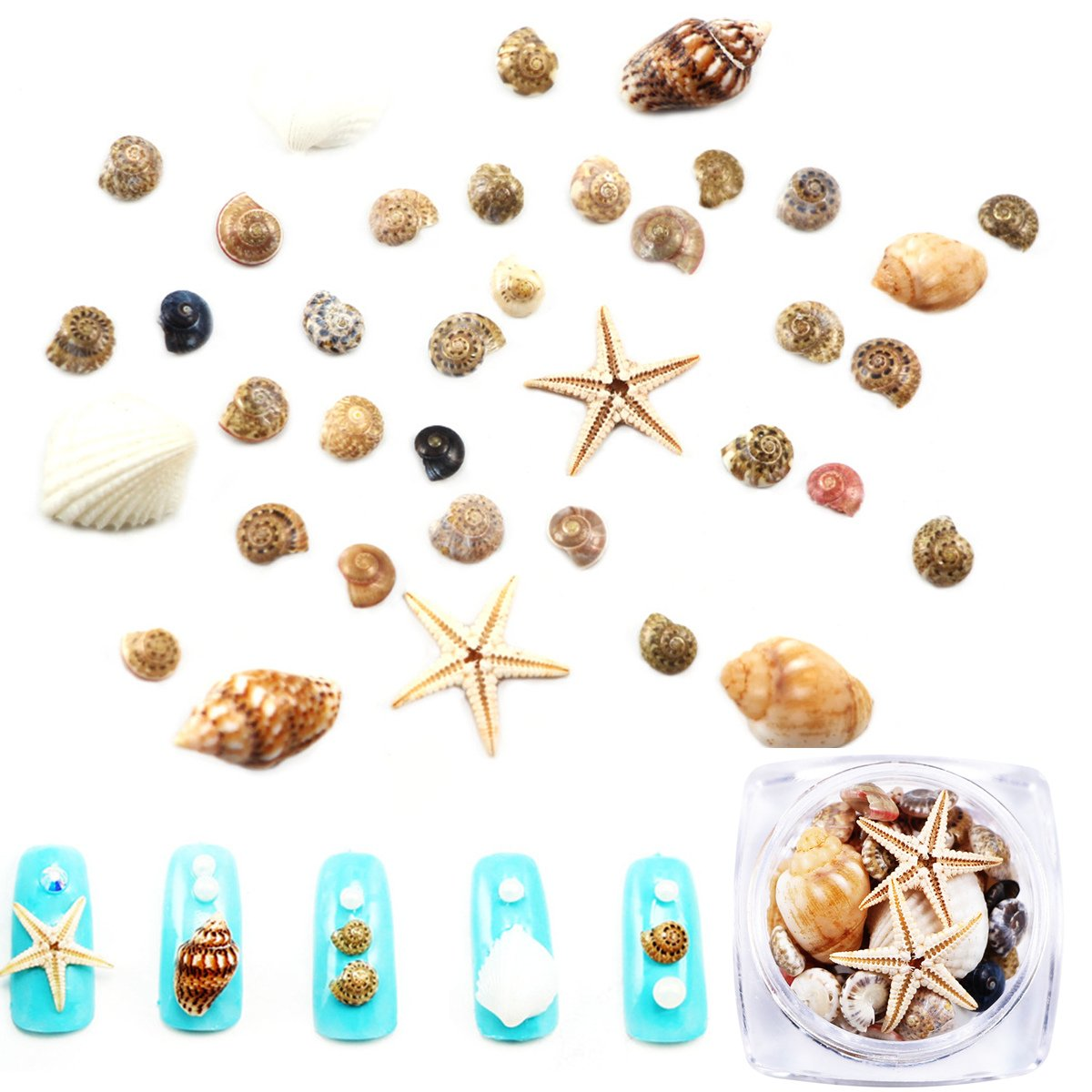 Mezerdoo 1 BOX Ocean Style Decorations Natural DIY Mini Conch Shells Starfish Sea Beach Ornaments 3D Nail Gems Accessories Manicure Nail Art Decoration Tools
