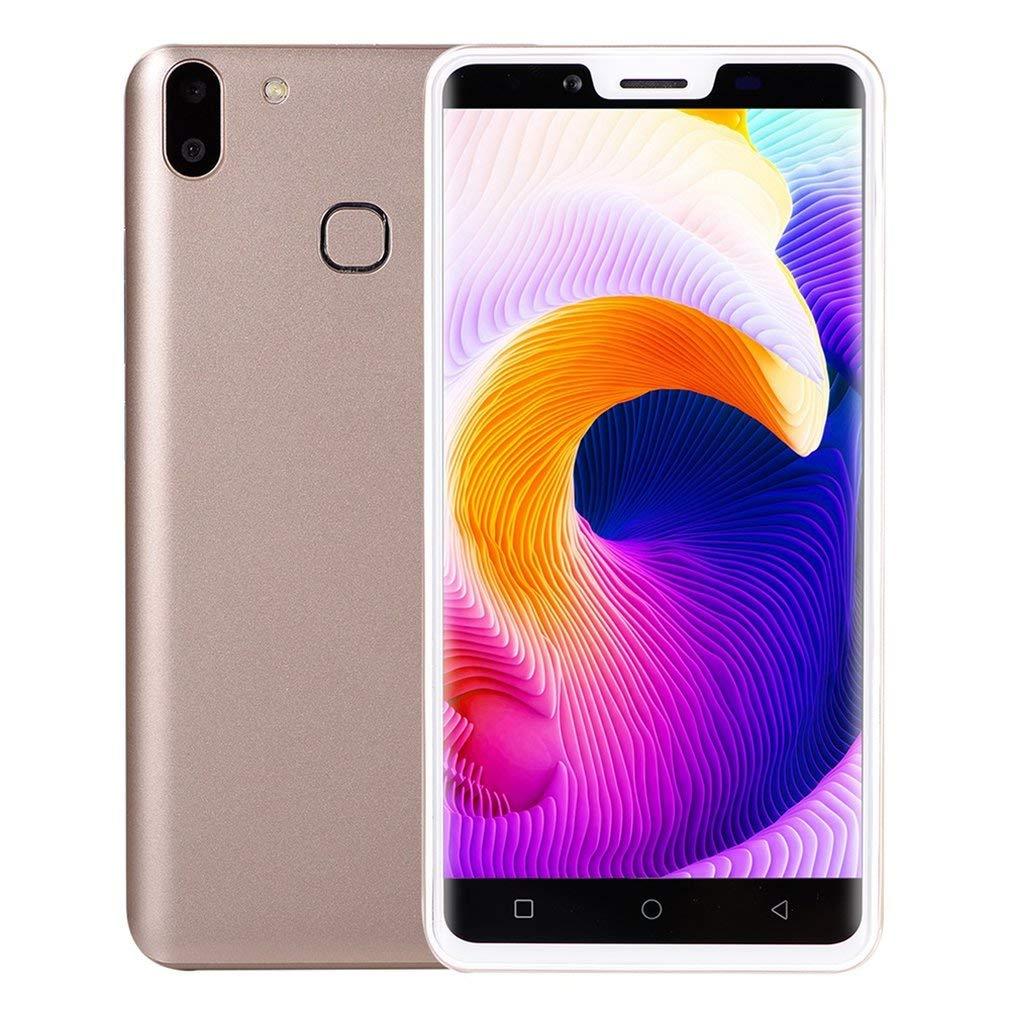 negozio di moda in vendita FDBF Mini X21 5  Smartphone Android 6.0 6.0 6.0 512MB+512MB Dual SIM Card Cellphone oro  Garanzia del prezzo al 100%
