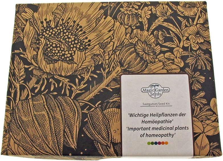Magic Garden Seeds 'Plantas medicinales Importantes de la homeopatía', Kit Regalo de Semillas con 7 Hierbas medicinales