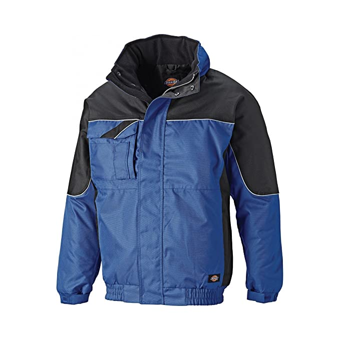 competitive price 9985f ffd01 Dickies - Industry 300 - Giacca Invernale Impermeabile ...