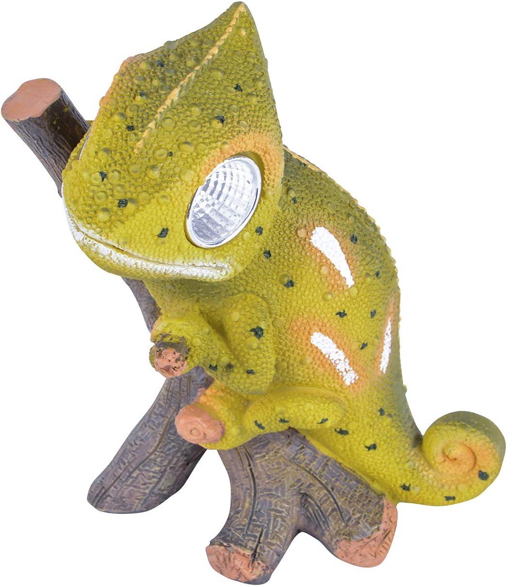 RM S de Commerce Solar Ojos Led Animales Camaleón como Figura de jardín con iluminación Solar: Amazon.es: Jardín