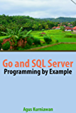 Go and SQL Server Programming By Example (English Edition)
