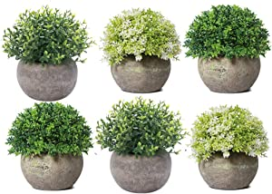 HC STAR Potted Artificial Pant Fake Green Grass with Pot Decorative Lifelike Set of 6 (Round Green-6)