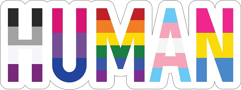 "Sticker Sensation Human LGBT+ Gay Pride Sticker - Rainbow Lesbian Bisexual Pansexual Transgender Flag Vinyl Decal Sticker - Car/Truck Bumper Sticker Laptop Decal (6"" x 2.25"")"