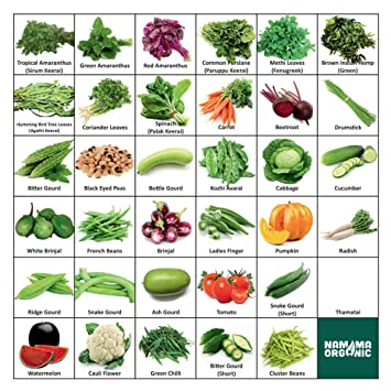 Namma Organic 36 Varieties (1800+ Seeds) Of Quality (Organic) Fruits & Vegetables Seed For Kitchen/Terrace/Poly House Garden