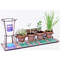 Funvention- for Little Scientist in Every Kid Garden Drip Irrigation Kit (Multicolour)