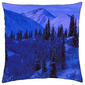 Azul de la nieve con tonos - Cojín (18: Amazon.es: Hogar