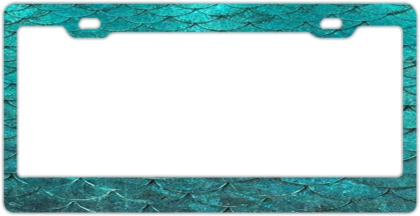 FunnyLpopoiamef Stainless Steel License Plate Frame,Waterproof License Plate Covers Elegant Car Plate Frame Car Tag Frame License Plate Frames Humor