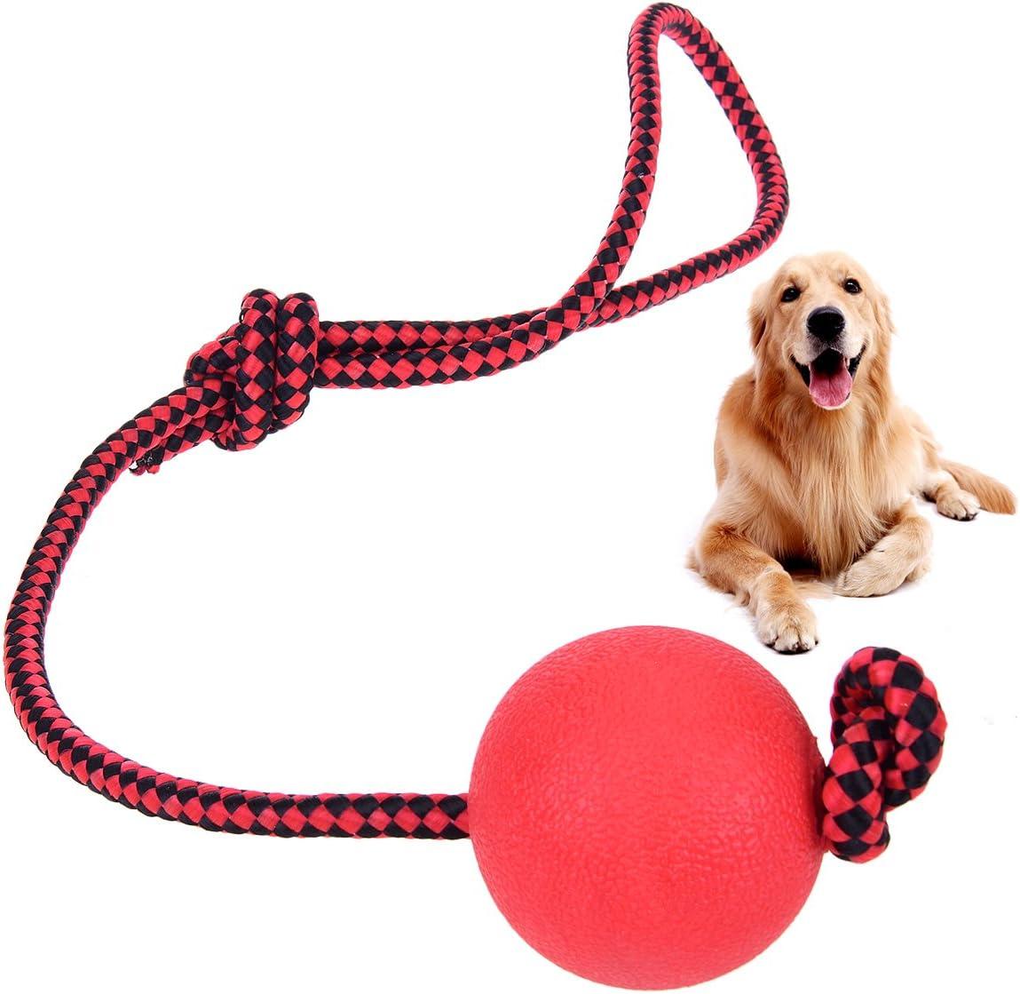 Prologfer - Pelota de goma maciza con cuerda de bola de goma para mascotas con cuerda de entrenamiento para hacer ejercicio masticar dentición para perros y gatos de tamaño pequeño a mediano: