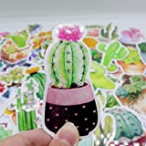 Girl Super Cute Watercolor Cactus and Succulent