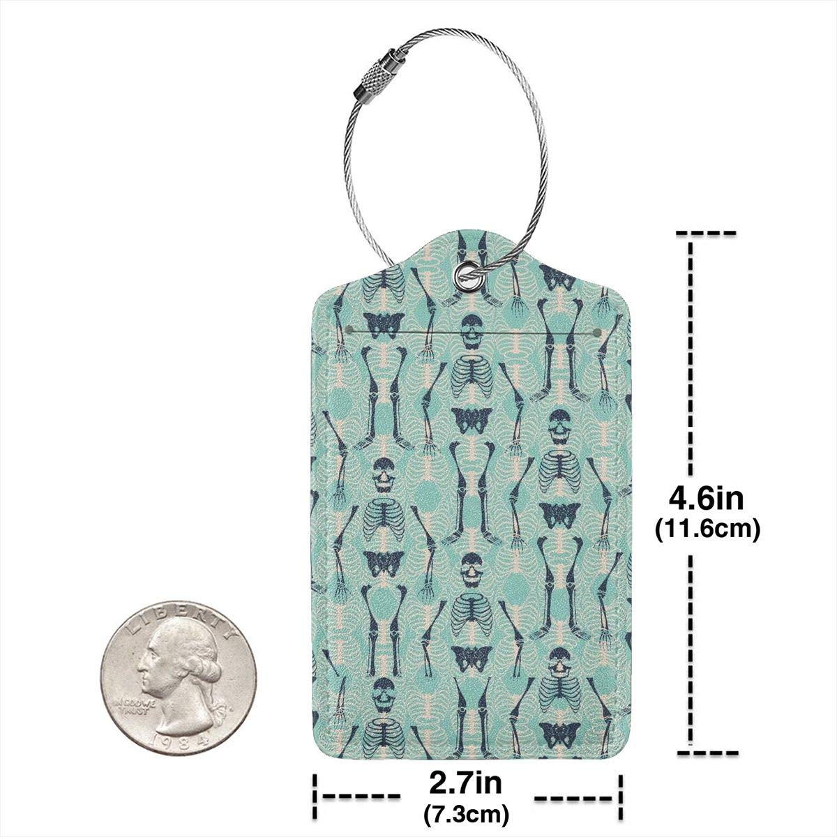 Key Tags for Travel Suitcase Handbags Gift Leather Luggage Tags Full Privacy Cover and Stainless Steel Loop 1 2 4 Pcs Set Halloween Skull Skeleton Mint Green 2.7 x 4.6 Blank Tag