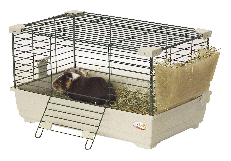 Jaula para conejos enanos
